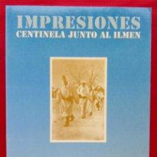 Militaria: DIVISIÓN AZUL. IMPRESIONES CENTINELA JUNTO AL ILMEN. AÑO:1991. BUEN ESTADO.. Lote 146212994