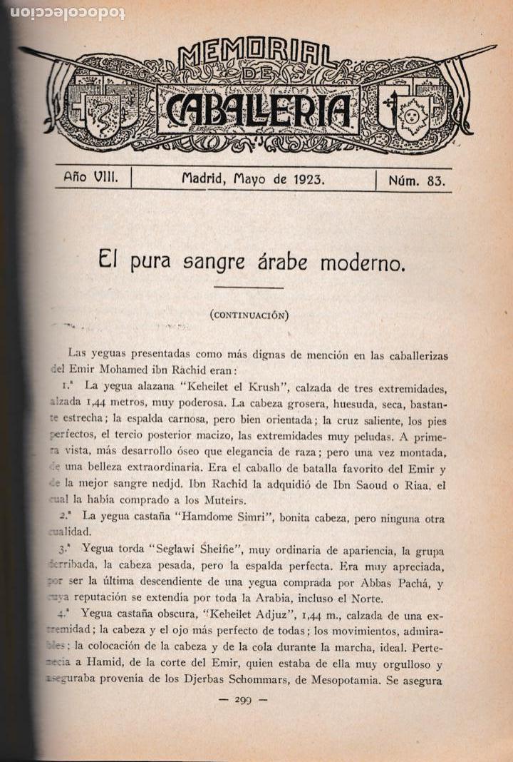 Militaria: Revista MEMORIAL DE CABALLERÍA- 1923 * CABALLOS * - Foto 9 - 160654410
