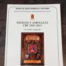 Militaria: RIESGOS Y AMENAZAS CBF 2005 - 2015 MINISTERIO DE DEFENSA. Lote 271007483