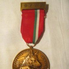 Militaria: MEDALLA CON CINTA - PROTECCIÓN DE LOS ANIMALES - 1972. SUIZA. MEDIDA: 5 X 4,5 CMS. SIN CINTA.. Lote 45469849