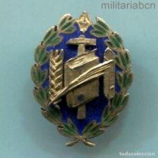 Militaria: MEDALLA DE PLATA DEL SINDICATO NACIONAL DE ENSEÑANZA. MINIATURA. VERSIÓN ORO.. Lote 288620983