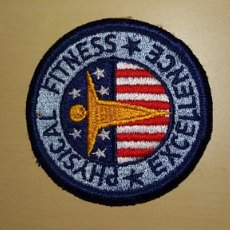 Militaria: PARCHE DUCACION FISICA US.ARMY. Lote 75700779