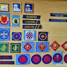 Militaria: INSIGNIAS SCOUTS DE ESPAÑA - ASDE (1991-2006) - SCOUT - ESCULTISMO. Lote 171357637