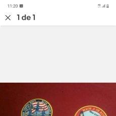 Militaria: PARCHE DEL EJÉRCITO DEL AIRE BLUE ANGELS PATRULLA ACROBÁTICA DEMO TEAM. Lote 265126314