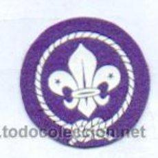 Militaria: SCOUT. Lote 268168994