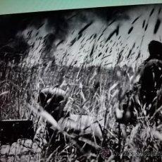 Militaria - DVD DIVISION AZUL II GUERRA MUNDIAL HISTORIA FOTOS - VIDEOS - MUSICA UNIFORMES DIVISION AZUL - 30389698