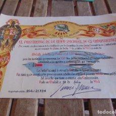 Militaria: DIPLOMA UNION NACIONAL DE EX COMBATIENTES MEDALLA DE LA PAZ DE FRANCO 1939 1964 FALANGE. Lote 87202664