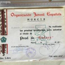 Militaria: ORGANIZACIÓN JUVENIL ESPAÑOLA, OJE, DIPLOMA PROEL ENLACE, PRIMERA ÉPOCA. Lote 167567204