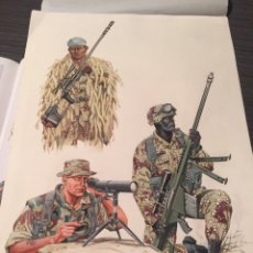 Militaria: LÁMINA ORIGINAL OSPREY FUERZAS DE ÉLITE. Lote 177771638