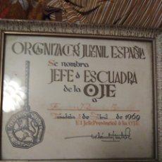 Militaria: DIPLOMA JEFE ESCUADRA DE LA OJE 1969. Lote 181225616