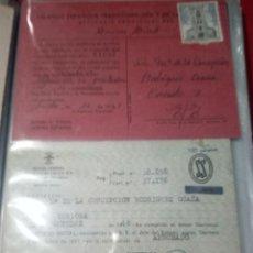 Militaria: SS.FALANGE.. Lote 193649093