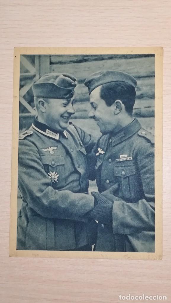 POSTAL DIVISION AZUL (Militar - Propaganda y Documentos)