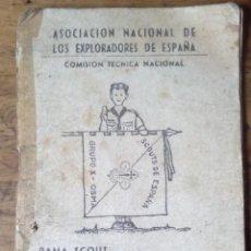 Militaria: ASOCIACION NACIONAL DE LOS EXPLORADORES DE ESPAÑA - RAMA SCOUT. Lote 198922002