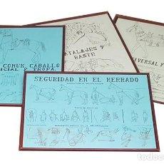 Militaria: LOTE ANTIGUAS 4 LAMINAS ENMARCADAS 35 X 68 CM DE MULOS Y CABALLOS MILITARES CUARTEL DE JACA, CUADRO. Lote 278345573