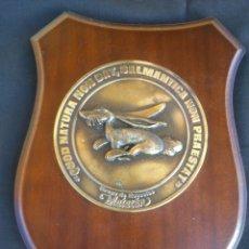 Militaria: METOPA DEL GRUPO DE ESCUELAS DE MATACAN .EJERCITO DEL AIRE. 26 CM X 19 CM.. Lote 47644624
