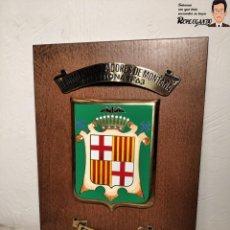 Militaria: METOPA MILITAR (RGTO. CAZADORES MONTAÑA Nº 63) - 25X17 CM. (EL BRILLANTE) PLACA Y ESCUDO ESPAÑA. Lote 194234712