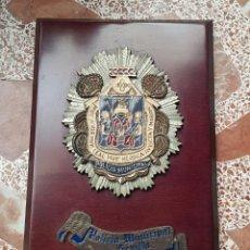 Militaria: METOPA ESPAÑA, POLICIA MUNICIPAL DE SEVILLA. Lote 251244105
