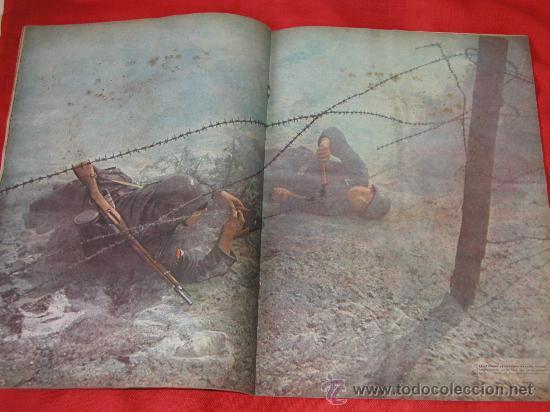 Militaria: Signal nº 24 1943 Ed. S. Revista Alemana, ed. Serbia SUPER RARO OCASION NºEspecial Tropas del ESTE - Foto 3 - 31737441