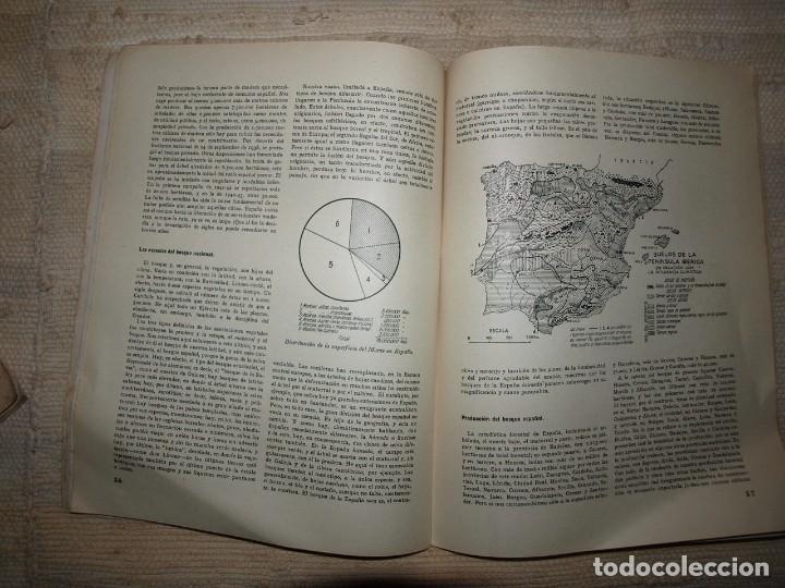 Militaria: Ejercito. Revista Ilustrada de las Armas y Servicios. Ministerio del Ejercito. - Foto 19 - 72168727