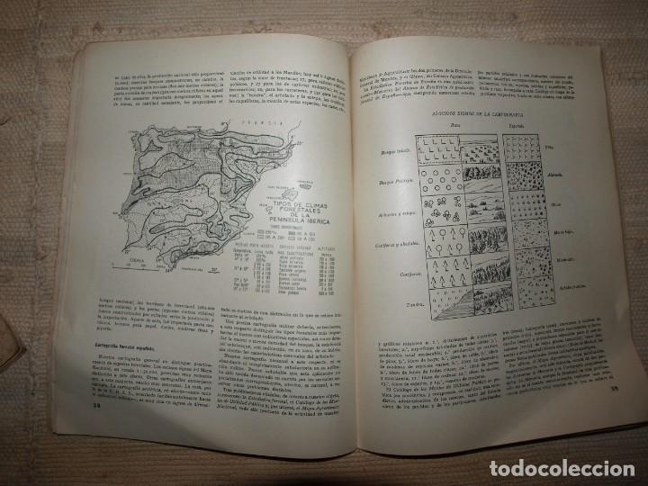 Militaria: Ejercito. Revista Ilustrada de las Armas y Servicios. Ministerio del Ejercito. - Foto 20 - 72168727