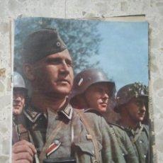 Militaria: REVISTA FILONAZI SIGNAL - Nº 15 - 1942 - DR. GOEBBELS .... Lote 74874039