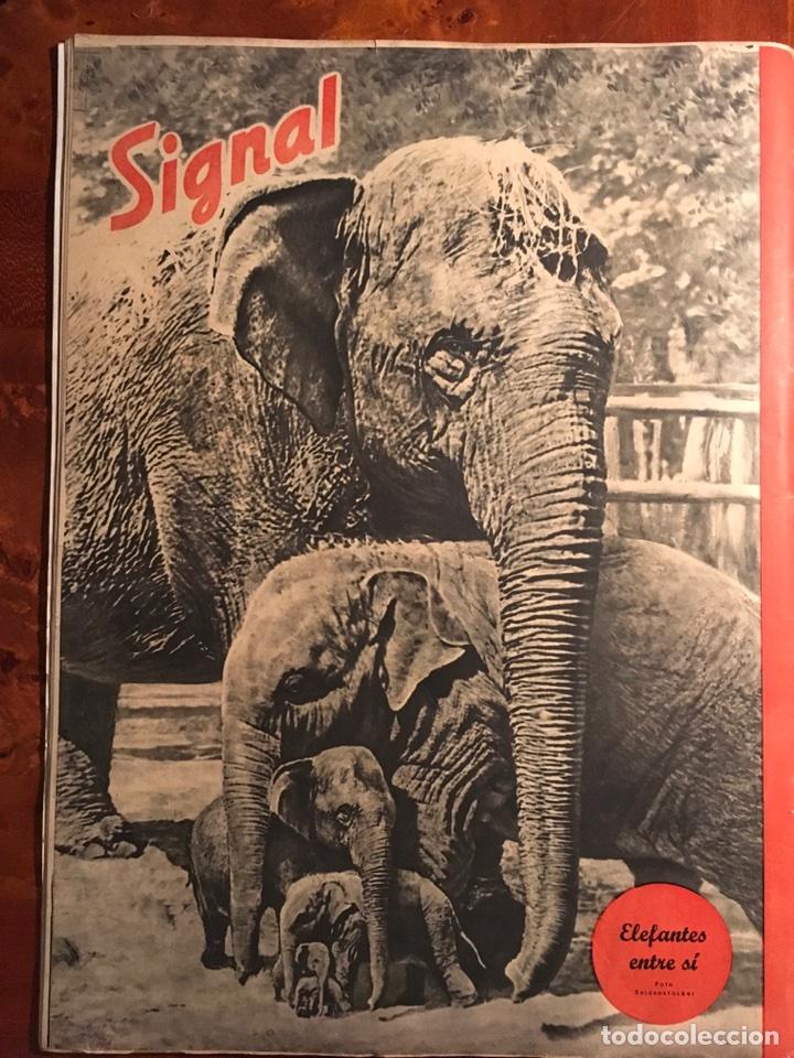 Militaria: Signal Revista alemana de guerra, edición española. 2 Número de septiembre de 1941 - Foto 11 - 98888667