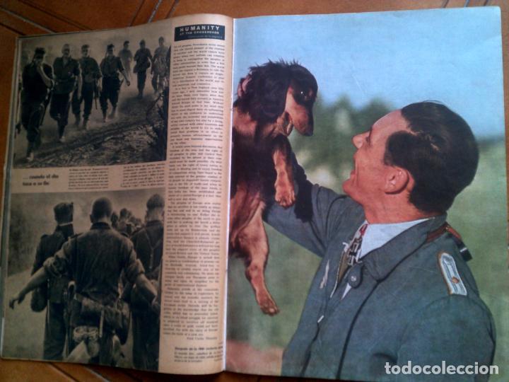 Militaria: REVISTA SIGNAL N,21 NOVIEMBRE DE 1941 - Foto 3 - 146403754