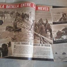 Militaria: REVISTA AÑO 1943 .DIVISIÓN AZUL. EL JUNKERS 88 . VIDA DE LUCIANO BONAPARTE.. Lote 237305165