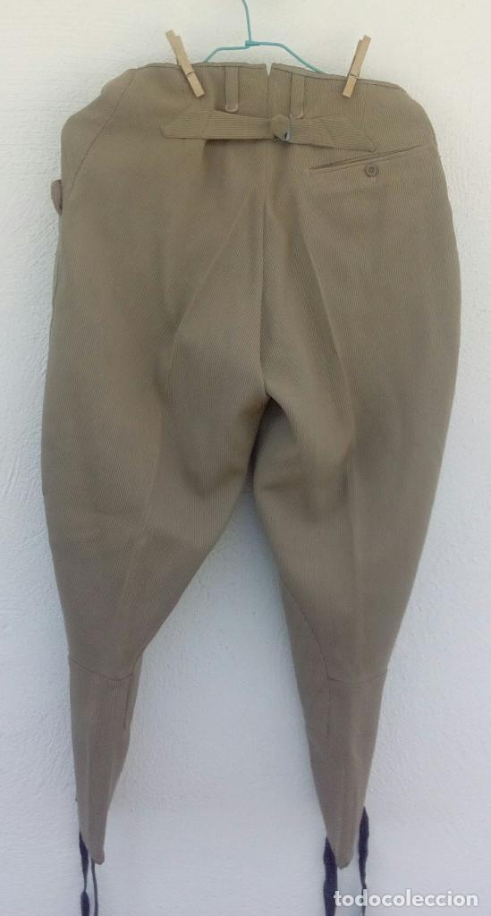 Militaria: Pantalón de montar, breeches oficial, canutillo garbanzo,talla 36-38 - Foto 5 - 159887658