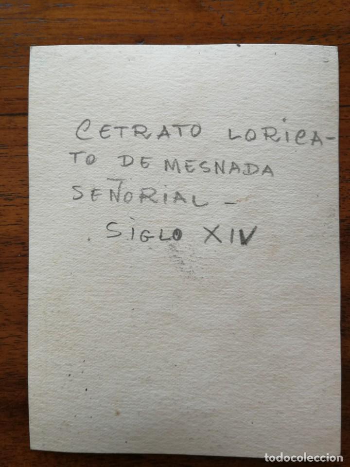 Militaria: Cetrato Loricato de Mesnada Señorial siglo XIV - Original Artístico - 8,5 cm x 11,3 cm - Foto 2 - 188722961