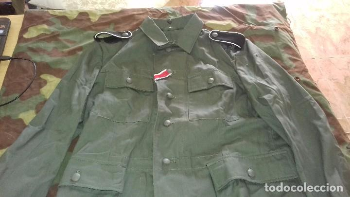 GUERRERA ALEMANA DRILLICH M43, TALLA M (Militar - Uniformes Extranjeros )