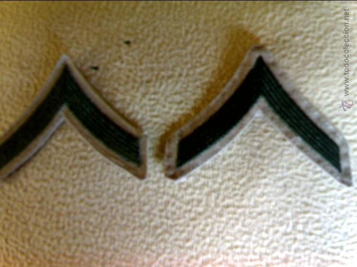 USMC GALONES DE SOLDADO DE LOS MARINES (Militar - Otros relacionados con uniformes )