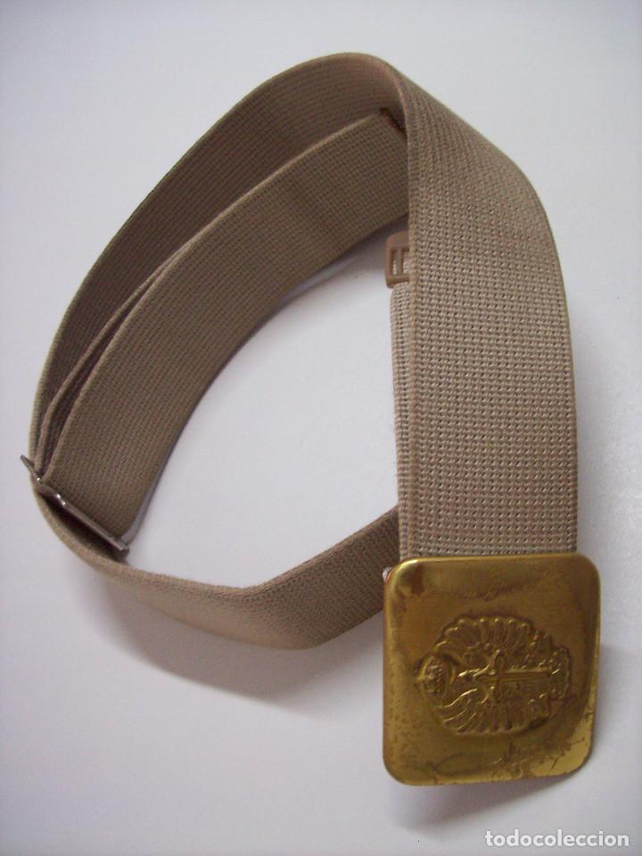 CINTO PASEO (Militar - Cinturones y Hebillas )