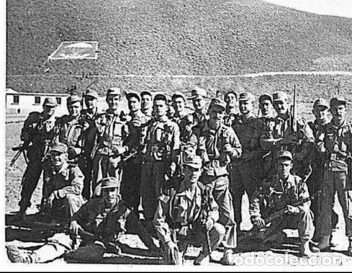 Militaria: Gorra de faena verde caqui, m1960, perfecto estado, talla M. Sidi Ifni, BRIPAC - Foto 5 - 119443243