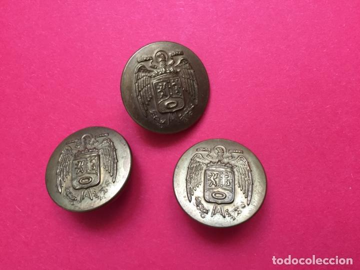 Militaria: Antiguos 3 BOTONES metálicos (Policía Municipal Madrid; 1950's) Águila ¡COLECCIONISTA! ¡Originales! - Foto 3 - 168600280