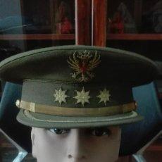 Militaria: GORRA DE PLATO CORONEL. REGLAMENTO 1943.. Lote 171387559