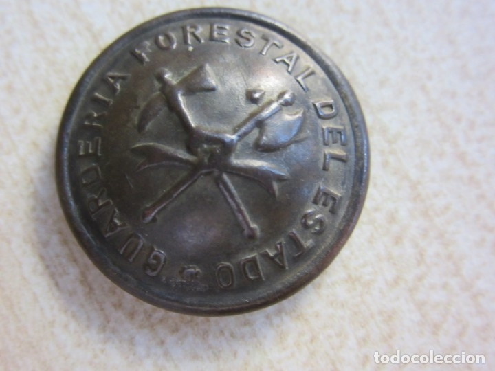 Militaria: Cascarilla de botón de Guardería Forestal del Estado Época republicana - Foto 2 - 174318248