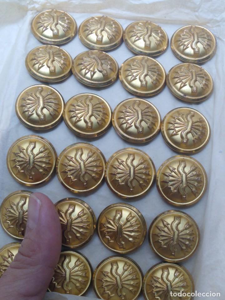 Militaria: 24 botones grande de Falange sin usar. - Foto 2 - 207073855