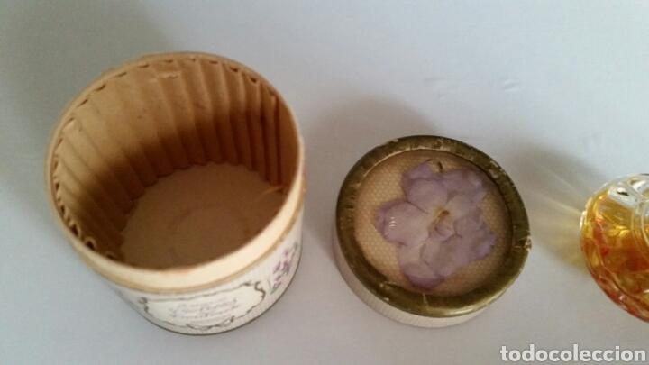 Miniaturas de perfumes antiguos: MINIATURA ESSENCE VIOLETTES DE TOULOUSE BERDOUES - Foto 4 - 116738456