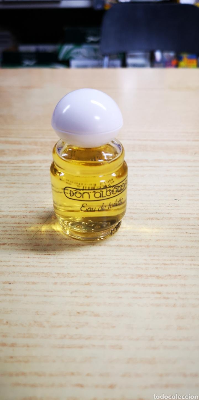 DON ALGODON COLÒNIA DE 30ML LLENA (Coleccionismo - Miniaturas de Perfumes)