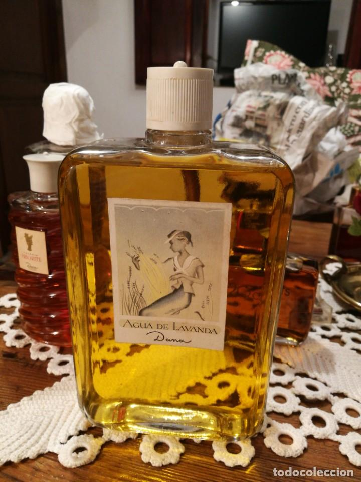 ENORME FRASCO AGUA DE LAVANDA DE DANA. (Coleccionismo - Miniaturas de Perfumes)