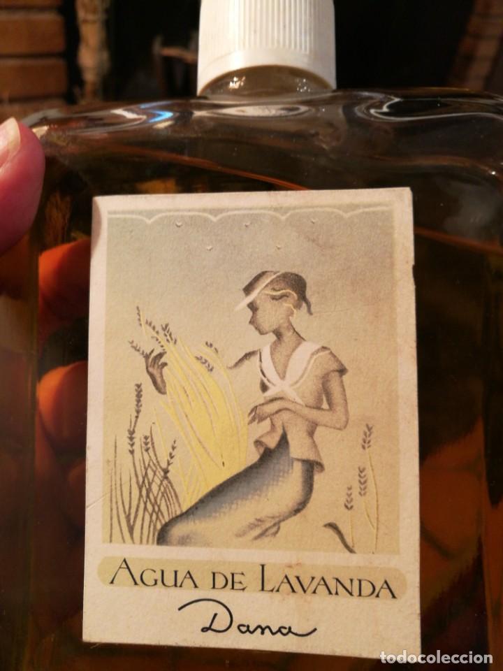 Miniaturas de perfumes antiguos: ENORME FRASCO AGUA DE LAVANDA de DANA. - Foto 2 - 160711254