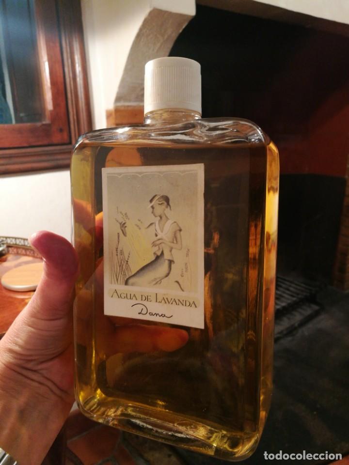 Miniaturas de perfumes antiguos: ENORME FRASCO AGUA DE LAVANDA de DANA. - Foto 3 - 160711254