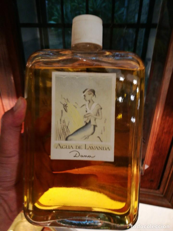 Miniaturas de perfumes antiguos: ENORME FRASCO AGUA DE LAVANDA de DANA. - Foto 5 - 160711254