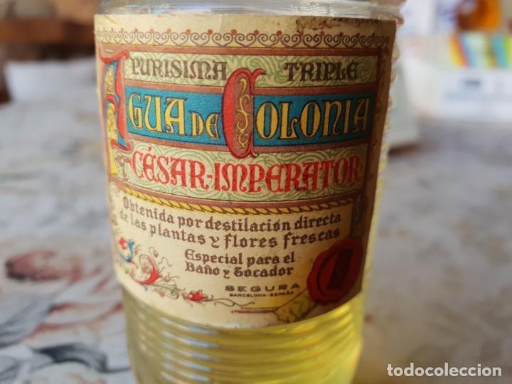 Miniaturas de perfumes antiguos: CESAR IMPERATOR 13 CM - Foto 4 - 190067976