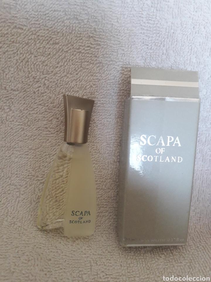 Miniaturas de perfumes antiguos: Lote de 14 perfumes en miniatura - Foto 7 - 268948289