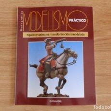 Hobbys: MODELISMO PRÁCTICO: FIGURAS Y ANIMALES: TRANSFORMACIÓN Y MODELADO. Lote 171611194