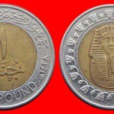 Monedas antiguas de África: 1 POUNS 2007 EGIPTO 1865T COMPRAS SUPERIORES 40 EUROS ENVIO GRATIS. Lote 96698379