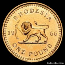 Monedas antiguas de África: RODESIA DEL SUR ZIMBABWE BRITANICO ISABEL II. 1 POUND. 1966. LEON. Lote 211857703