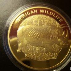 Monnaies anciennes d'Afrique: PRECIOSA MONEDA AFRICAN,REPUBLIC ZAMBIA 2016 ORO LAMINADO. Lote 226633150